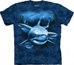 Shark Moon Eyes - The Mountain