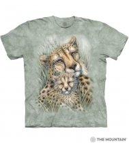 Cheetahs - Junior The Mountain