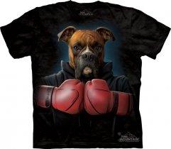 Boxer Rocky  - The Mountain