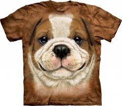 Big Face Bulldog Puppy - The Mountain