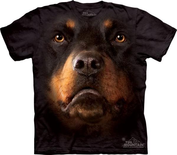 Rottweiler Face - The Mountain