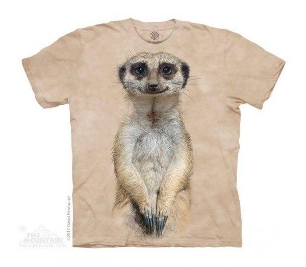 Meerkat Portrait - The Mountain - Junior