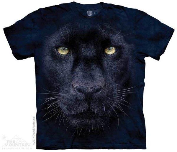 Panther Gaze - The Mountain