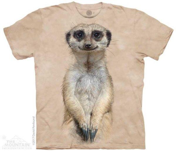 Meerkat Portrait - The Mountain