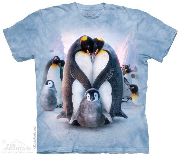 Penguin Heart - The Mountain