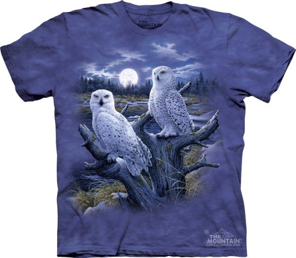 Snowy Owls -  The Mountain