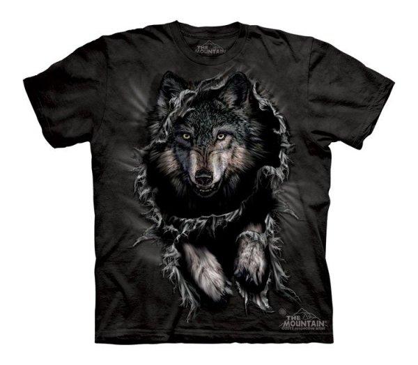 Breakthrough Wolf - Junior - The Mountain