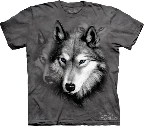 Wolf Portrait -  The Mountain