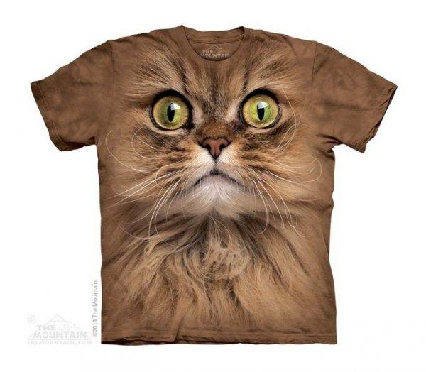 Big Face Brown Cat - Kot - The Mountain - Junior