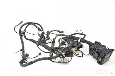 Ferrari 360 Modena Spider Front trunk luggage compartment wiring loom harness