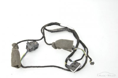 Bentley Continental GT 2003 Roof wire loom harness