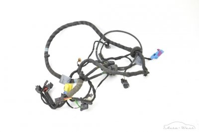 Lamborghini Aventador LP700-4 Door wiring harness loom cables