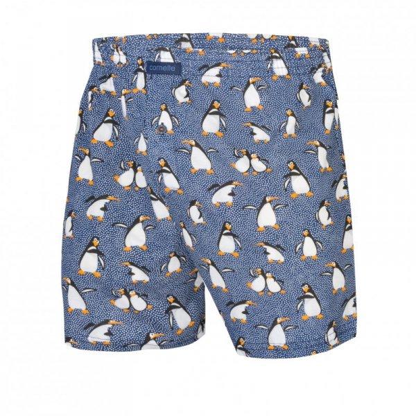 Cornette Penguins 2 016/08 szorty