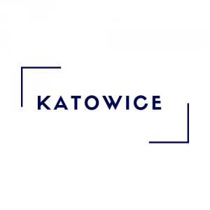 Katowice - Kurs Wychowawcy/Animatora/Pierwszej Pomocy (27-29.11.2020 r.)