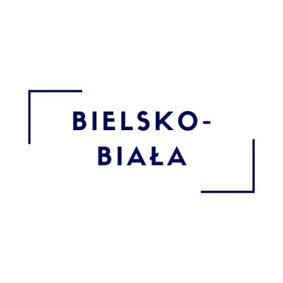 Bielsko-Biała - Kurs Wychowawcy Wypoczynku/Animatora/Pierwszej Pomocy (29-31.03.2019)