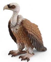 Figurka Ptak Sęp Płowy Schleich 14847