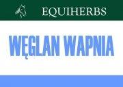 Węglan wapnia 3 kg - EQUIHERBS