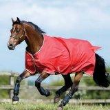 Derka padokowa AMIGO Hero 6 Lite 50g - HORSEWARE - red/white/green/black