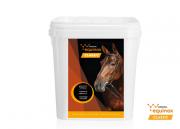 Yarrowia EQUINOX Classic drożdżowy suplement diety 3 kg - granulat