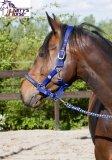 Komplet kantar + uwiąz RHA COBALT - HARRY'S HORSE