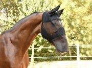 Maska przeciwko owadom z ochroną uszu i chrap - Covalliero