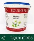 Głóg 1 kg - EQUIHERBS