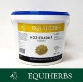 Kozieradka nasiona 1 kg - EQUIHERBS