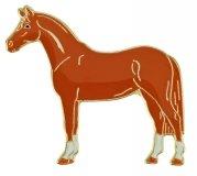 Znaczek ozdobny 81 - kasztanowaty koń - HappyRoss