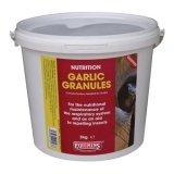 Czosnek w proszku Garlic Powder 1kg - EQUMINS