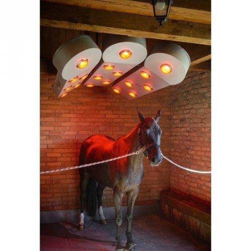 Solarium SOLAR-TEC 3-panelowe - BM Horse