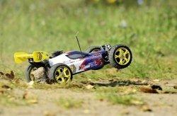 REELY BYGGY NITRO Rex-X, 1:8, 2WD, RtR 2,4 GHZ
