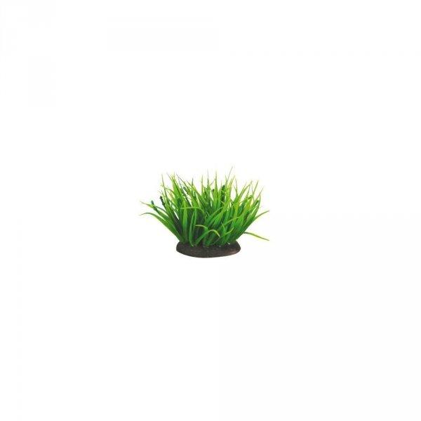 Aquael Roślina Kępkowa PR-203 3 (7cm)