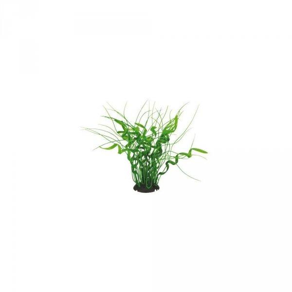 Aquael Roślina Kępkowa CP-035 8 (20cm)