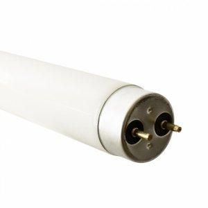 Świetlówka Fluorescencyjna T8 36W 120cm 4000K G13