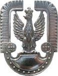 orzeł metalowy Sił Powietrznych na czapkę