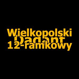 Wielkopolski 12 - ramkowy