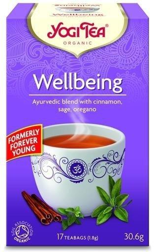 YOGI TEA® Ajurwedyjska herbata PEŁNIA ŻYCIA z cynamonem, szałwią i oregano (Wellbeing)