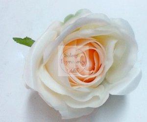 Róża LuX - 1 szt