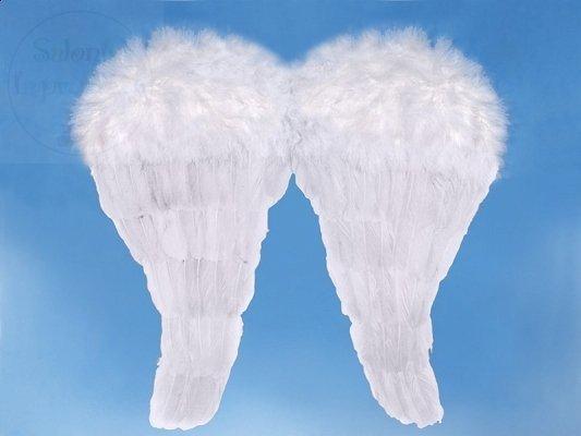 Skrzydła anioła 50x46cm