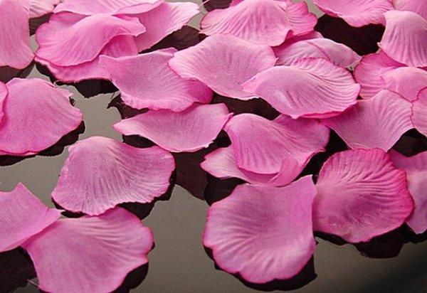 Płatki róż w woreczku rózowe 500 szt PLRD500-006
