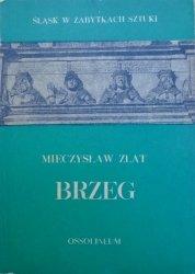Mieczysław Zlat • Brzeg [Śląsk w zabytkach sztuki]