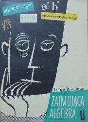 Jakub Perelman • Zajmująca algebra [Wiesław Kosiński]