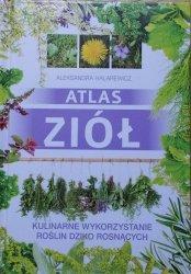 Aleksandra Halarewicz • Atlas ziół