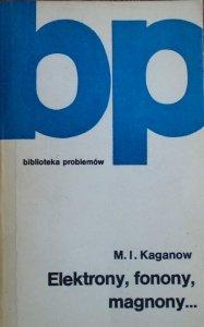 M.I.Kaganow • Elektrony, fonony, magnony