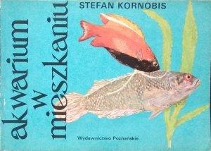 Stefan Kornobis • Akwarium w mieszkaniu