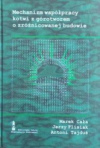 Marek Całka • Mechanizm współpracy kotwi z górotworem o zróżnicowanej budowie
