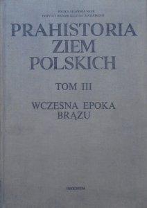 red. Aleksander Gardawski, Jan Kowalczyk • Prahistoria Ziem Polskich tom III. Wczesna epoka brązu