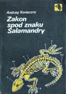Andrzej Konieczny • Zakon spod znaku Salamandry