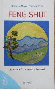 Hermann Meyer, Gunther Sator • Feng Shui. Jak mieszkać i pracować w harmonii