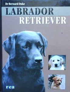 Bernard Duke • Labrador Retriever